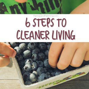 6 Steps to Cleaner Living