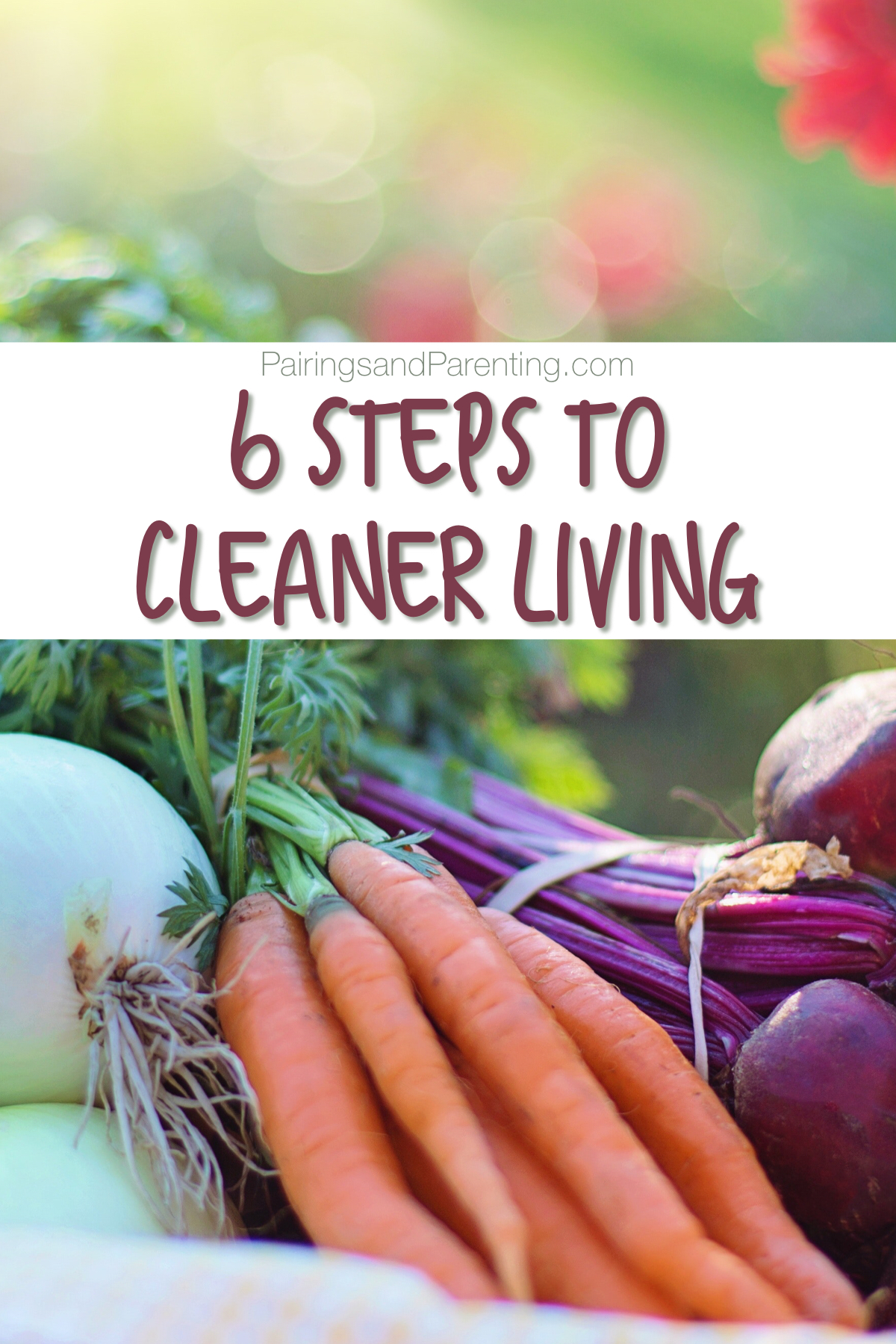 6 Steps For Cleaner Living and Organic Eating